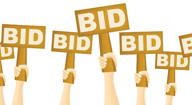 Finding the Right PPC bidding strategy